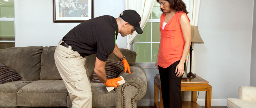 Fair Oaks, VA carpet upholstery cleaning